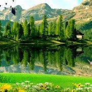 Landscape Live Wallpaper – горный пейзаж на экране Sony Xperia