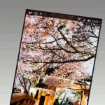 Japan Display разрабатывают новый супер экран для второй версии Sony Xperia Z Ultra