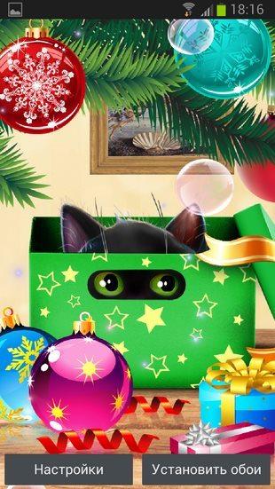 Качественные обои Новогодний Котенок для всех Сони Иксперия