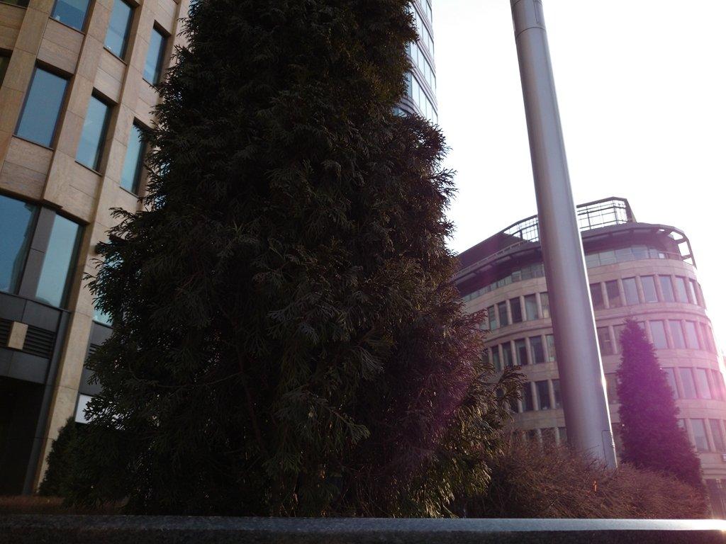Примеры фото с камеры Sony Xperia Z1 Compact