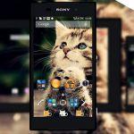 Котёнок – милая тема для Sony Xperia