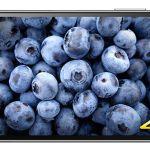 Дисплей Sony Xperia Z5 Premium может работать в режиме Full HD!