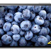 дисплей Sony Xperia Z5 Premium 4К и Full HD