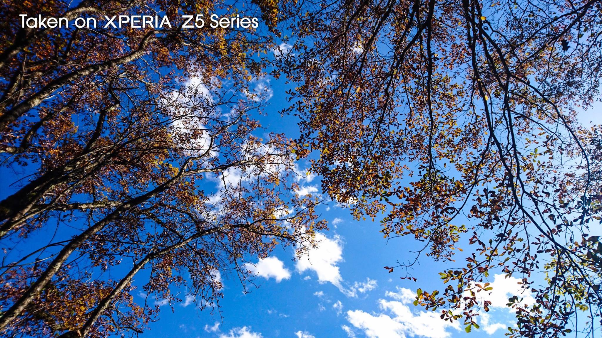 красивые фото с камеры Sony Xperia Z5 и Z5 Compact